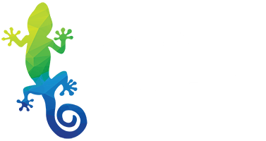 The Leader In Hydrographic Film & Hydro Dipping | Immersion